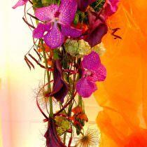 Cvetje Eli